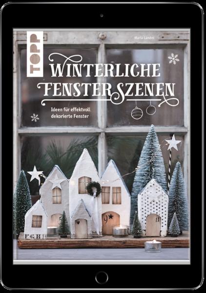 Winterliche Fensterszenen (eBook)