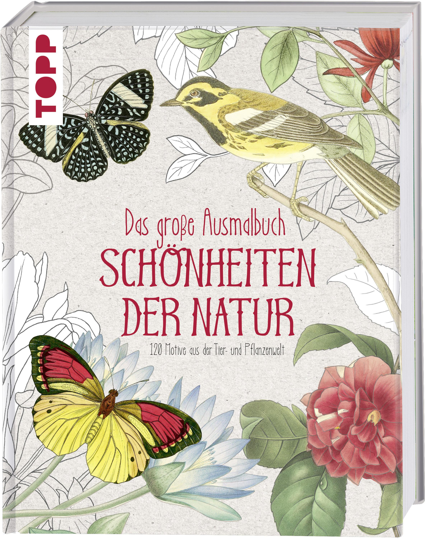 Das Große Ausmalbuch Schönheiten Der Natur Ausmalbilder Pflanzen