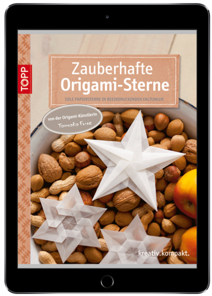 Zauberhafte Origami-Sterne (eBook)